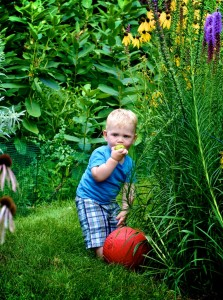 Toddler in Garden