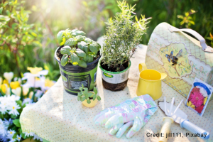 lovely gardening table with sunshine
