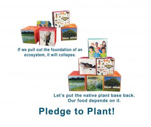 Native plants are basis of our food supply
